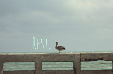 Rest on Sunday.