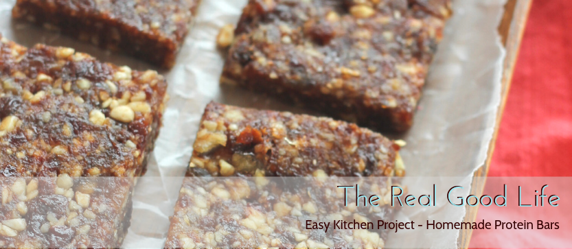 Easy Kitchen Project - Homemade Protein Bars